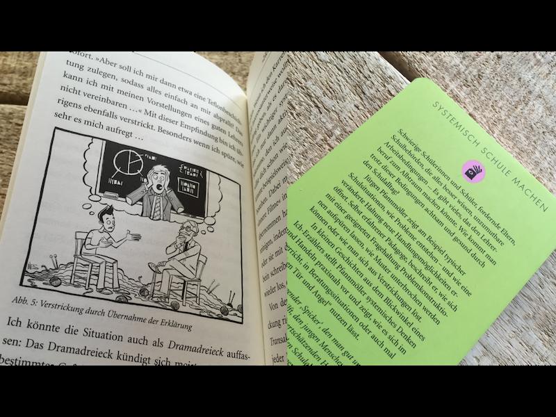 Das Buch Systemisch Schule machen